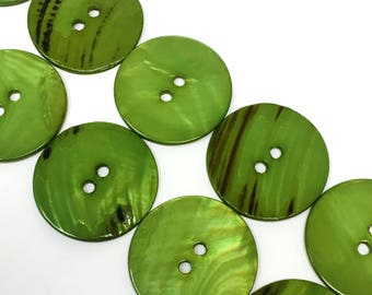 """1 1/2"""" Seaweed Green Sea Shell Two Hole Button 6 Pieces"""