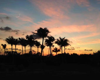 Florida Sunset Digital Photography Vacation Gulf of Mexico Palm Trees