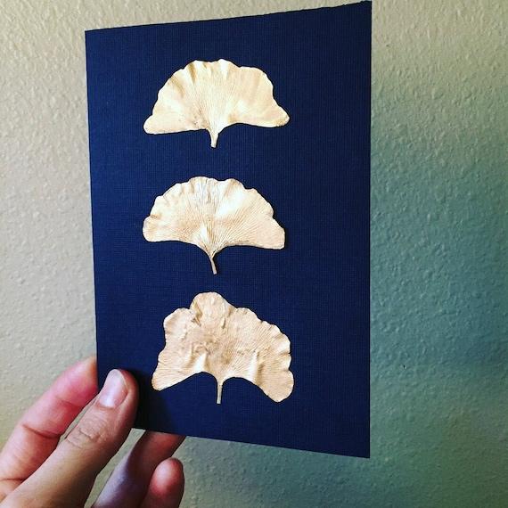 Gold Gingko Herbarium Art - Gold Leaf Botanical Art - Real Pressed Gingko Artwork- Vintage Botanical - Framed Fern Art- Gold and Black