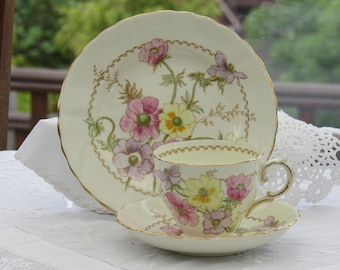 Plant Tuscan Cup and Saucer, Tuscan Teacup Trio, Vintage Teacup and Saucer Set, 1950's Bone China, Made in England, Hand Painted