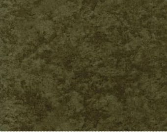 Forever Green - Pine Dark Green 6538 105 - Moda Fabrics - 100% Cotton Quilting Fabric by Holly Taylor