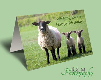 Funny Birthday Card - sheep birthday card - ewe - lamb - birthday card - sheep - card for birthday - funny congrats card - personalised card