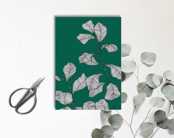 Ficus Lyrata - Green passion - illustrated postcard - drawing - botanical Herbarium - digital print in color - monocotyledonous