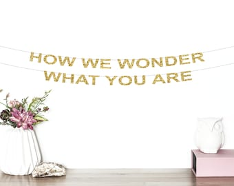 How We Wonder What You Are Glitter Banner   Twinkle Twinkle Little Star Banner   Birthday Banner   Baby Shower Banner   Party Decor   Gold