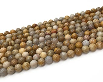 1Full Strand Fossilized Coral Round beads 6mm 8mm 10mm 12mm 14mm 20mm Wholesale Fossil Coral Gemstone For Jewelry Making