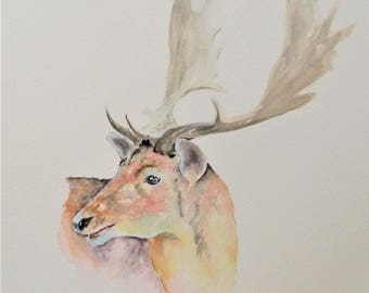 "Stag 12"" x 10"" Original watercolour painting"