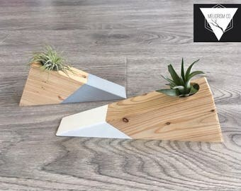Set of Two Wooden Air Plant Holder