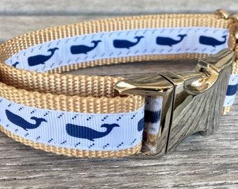 """Humpback Whale 1"""" Wide Dog Collar, White Dog Collar, Nautical Dog Collar, Silver Buckle Nylon Webbing"""