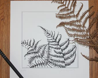 Print: pen and ink drawing, bracken/fern