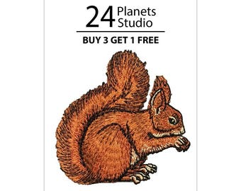 Squirrel Iron on Patch by 24PlanetsStudio