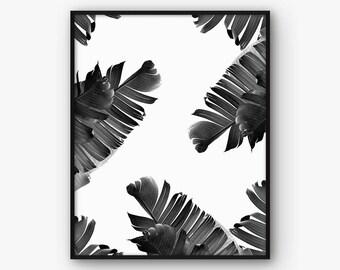 Botanical Print, Banana Leaves Art, Palm Leaves Pritnable, Leaf Art, Botanical Wall Decor, Black and White Decor, Wall Printable, Home Decor