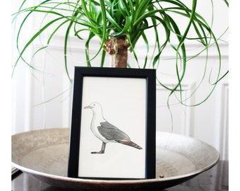 """""""Seagull"""" - framed map"""