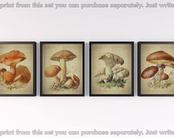 Set of 4 prints, Dictionary page art, Vintage botanical prints, Antique mashroom illustration, Print for wall, Set of 4 wall art, 8x10 JPG