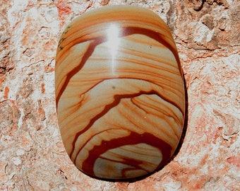Owyhee Picture Jasper Cabochon