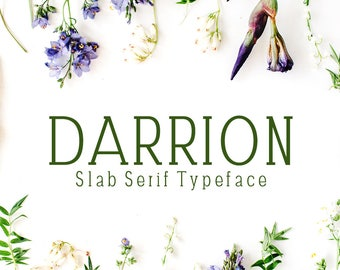 Darrion Slab Serif Font Family