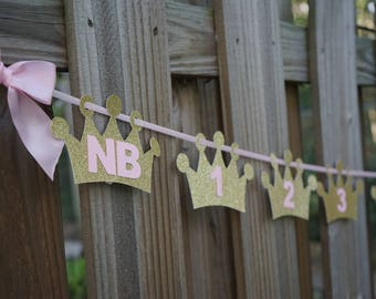 First year Monthly Milestone Photo Banner. Handcrafted in 2-3 Business Days. First Birthday Garland.