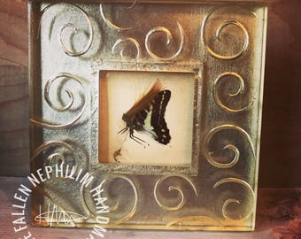 Pressed Fairy in a Frame - Preserved Dead Fae - Macabre Oddities - Curio Oddity - Vintage - Arts &Crafts Frame - Butterfly