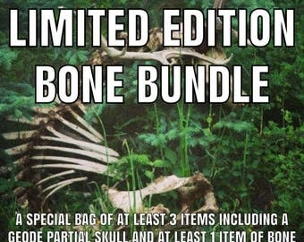 Limited Edition Bone Bundle Package - At least 3 items including a partial geode skull and a piece of jewellery