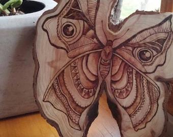 "Wood burned ""butterfly"" on wood slice"