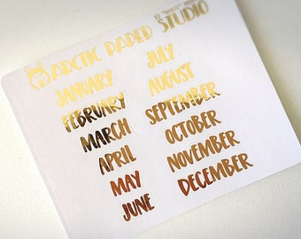 Month CAPS FONT - FOILED Sampler Event Icons Planner Stickers