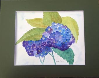 Blue Hydrangea Watercolor Painting // #Flower // #Floral