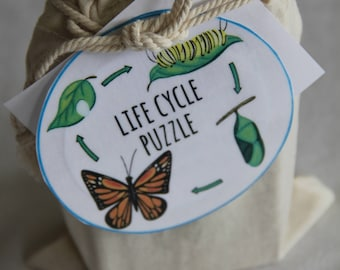 Butterfly Life Cycle Puzzle - wood puzzle