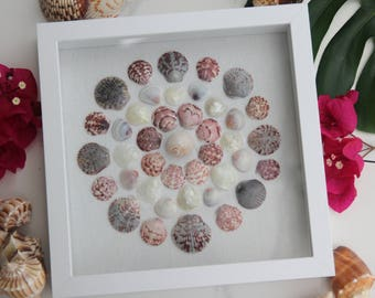 Circles // Modern Beach Themed Decor for Bedroom Bathroom Living Room or Nursery // Shadowbox by SanibelShellArt