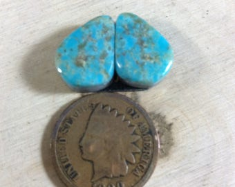 12.5ct Natural Nevada Turquoise  (Item#928)