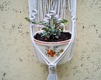 Wall hanging plant hanger