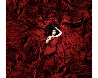 Fine Art Photography 20x20 Print Dreams In Red II