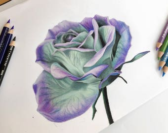 Magical Mint and Purple Flower Drawing Print - Wall Art - Teal