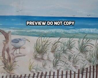 Seashore & Seagull