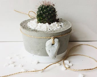 Small planter with accessory