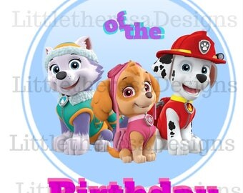 Paw Patrol Sister Of The Birthday Girl Transfer , Digital Transfer , Diy , Digital Iron On