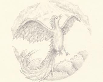 Phoenix (pencil on paper)