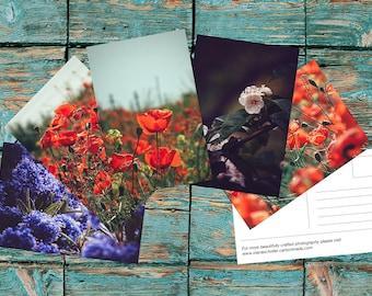Summer Postcard Set, Postcard Display, Photography Postcards Set, Stationery Set, Art Prints, Art Prints Set