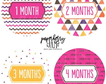 Baby Girl Tribal Monthly Baby Stickers // Month to Month Stickers // For First Year Milestones // Onesie Stickers