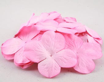 Pink Hydrangea Bloom Pbc110