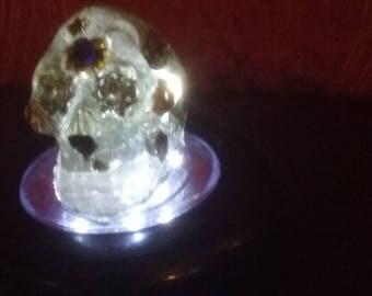 Orgone Transducer - Skull