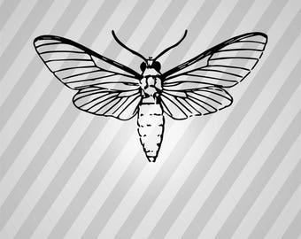 Moth Fly Silhouette - Svg Dxf Eps Silhouette Rld RDWorks Pdf Png AI Files Digital Cut Vector File Svg File Cricut Laser Cut