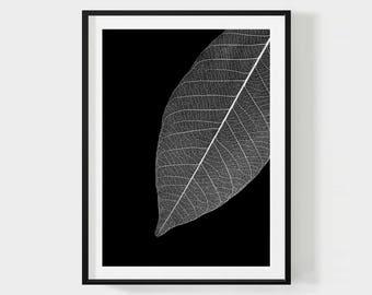 LEAF PRINTABLE, Botanical Wall Art, Botanical Poster, Black Art Print, Leaf Structure Print, Contemporary Modern Wall Art, Digital Download