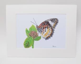 Cethosia Cyana Butterfly Print