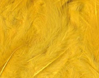 Size 3 - 6 to 12 cm - Ref 13030017 duvetees yellow feathers