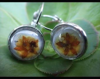 Glass Dome Flower Earrings