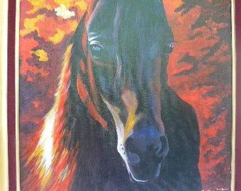 "Equine portraits: ""dark beauty"""