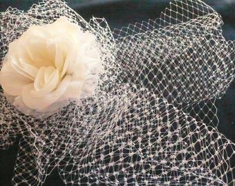 Birdcage Full Face Veil of French Netting