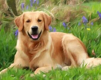 Custom Pet Portraits / Custom Dog Portraits / Custom Portrait, Painting from Photo