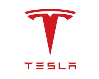 Tesla Name with large T Logo Wall Art Window Decal - Large Sizes
