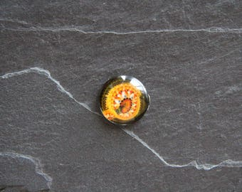 20 mm multi color glass cabochon