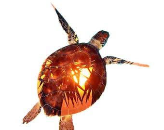 Double Exposure Sea Turtle